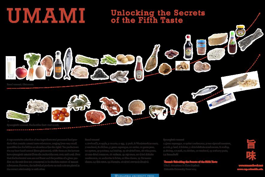 「うま味:第五の味覚の秘密を解き明かす」の表をご覧ください。 (ESPEN 2016の特別講義にて実際に使用されたスライドの元図です。)